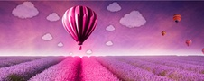 SAP® Solutions on Open Telekom Cloud – the secure way into the public cloud.